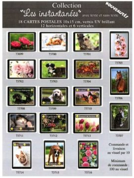 COLLECTION LES INSTATANEES – ASSORT 18 X 10