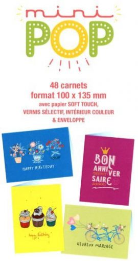 48×6 = 288 CARNETS DOUBLE COLLECTION MINIPOP 100×135 mm
